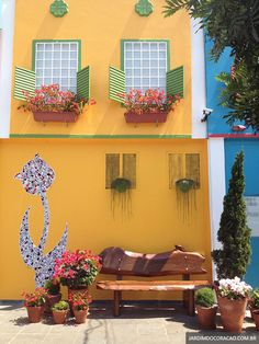 Cores e flores na cidade de Holambra-SP