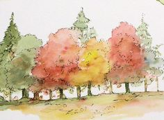 Original Watercolor Painting TREES Illustration Fall Trees in Vermont.