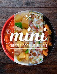 31 Paleo Crockpot Freezer Meals