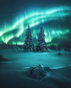 The northern lights are amazing. If you've never seen them in person, make a trip and do it. It is worth it