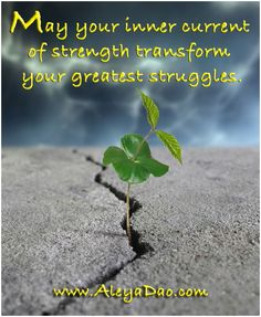 May your inner current of strength transform your greatest struggles. Get a Free week of the Daily Cups of Consciousness meditations. http://www.cupsofconsciousness.com/ Follow me on Facebook www.facebook.com/MeditationTransformation?ref=hl