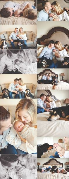 Newborn portraits at home with dogs. I like including the pets.