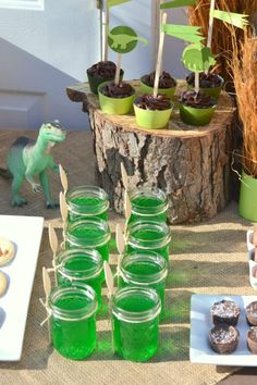 Dino Mite Dinosaur themed party, lime aid with green straws
