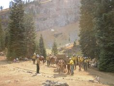 Ivan and the Trinity Shasta Mules supplying the Carson Hotshots on Happy Camp Complex Fire
