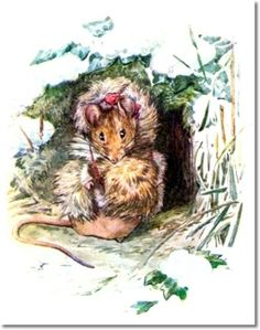 The Tale of The Flopsy Bunnies - 1909 - Thomasina Tittlemouse Got A Present Of Rabbit Wool