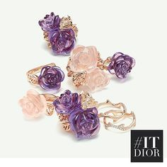 Created by Victoire de Castellane, the Rose Dior Pré Catelan collection revisits the flower do dear to Christian Dior