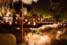 Desert Botanical Garden -- Las Noches de las Lumianarias