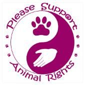 Abuse and neglect are wrong...please stand for something and stand up for the voiceless...