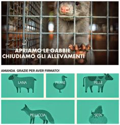 Saturday, February 28, 2015  #AnimalFreeFashion #MFW #LAV -la moda etica ed ecologica in scena a Milano e sul web - collezioni eco sostenibili di vestiti ed accessori      ENG INTRO : Dear readers, sorry if my english version today is so breve, but these are really busy days. I try to explain here the aim of the post : is about the launch of the new websiteANIMAL FREE FASHION from the italian pro animal rights association LAV. The website is available in 4 language versions: italian, ...