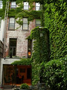 backyard city oasis with ivy-covered brick walls.