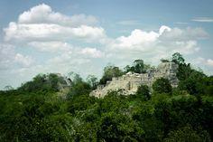 Calakmul Ruins Campeche Mexico