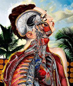 Arte anatómico de Valerio Carubba