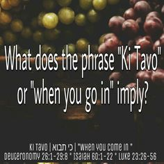 """Ki Tavo"" means ""when you (singular) come in"", from the verb ""bo"" (to come/go), implying that the instructions in this portion regarding first fruits apply to each individual person entering the Land. ""Let 'the first' bring the first, to the first, to the first place, to the First of All""! ""Listen to Me, Jacob, Israel whom I called: I am He; I am the first; I am also the last."" Isaiah 48:12  #LearnYourTorah #ItsAllAboutYeshua #KiTavo"