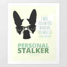 Boston Terrier: Personal Stalker. Art Print by Lulo The Boston Terrier - $22.99