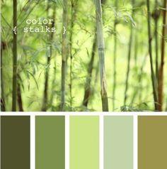 Зеленый в интерьере: сочетание цветов