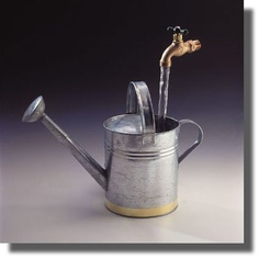 Floating watering can