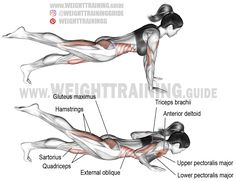 One-leg push-up. A compound exercise. Target muscles: Lower Pectoralis Major Iliopsoas and Obliques. Dynamic stabilizer: Biceps Brachii (short head only). Important stabilizers of su Best Shoulder Workout, Best Chest Workout, Chest Workouts, Fit Board Workouts, Leg Training, Weight Training, Leg Raise Exercise, Bodybuilding, Compound Exercises