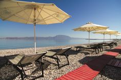 Alkyon Resort Hotel Spa – Your luxury vacations in Greece Greece Vacation, Hotel Spa, Hotels And Resorts, Patio, Luxury, Outdoor Decor, Life, Home Decor, Court Yard