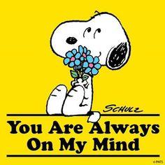 Snoppy│Snoppy - - You are always on my mind - Snoopy Love, Snoopy And Woodstock, Peanuts Gang, Peanuts Cartoon, Snoopy Cartoon, Cartoon Fun, Meu Amigo Charlie Brown, Charlie Brown Y Snoopy, Peanuts Quotes