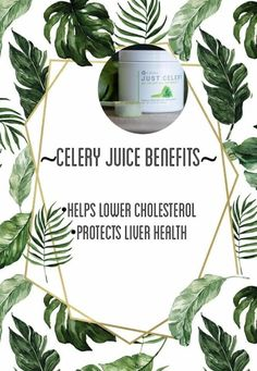 So many benefits to drinking celery. No hassle with buying bundles when you use Just Celery. Easy and effortless! Celery Juice Benefits, It Works Marketing, Skinny Coffee, It Works Products, Grass Fed Butter, Lower Cholesterol, Good Fats, Active Ingredient, Healthy Life