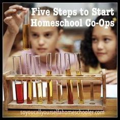 Five Steps to Start a Homeschool Co-Op :: Are you looking to start your own homeschool co-op? Come see how today over at www.soyoucallyourselfahomeschooler.com