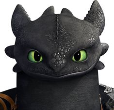 toothless from how to train your dragon Night Fury Dragon, Toothless Night Fury, Toothless Dragon, Hiccup And Toothless, Toothless Tattoo, Toothless Cake, Dragon Rider, Dragon 2, Dragon Head