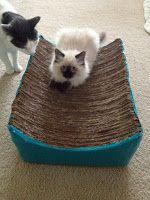 DIY Cardboard cat scratcher bed