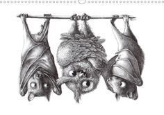 'Owls' by Stefan Kahlhammer  ~ Makes me smile. Silly owl!  You are not a bat.