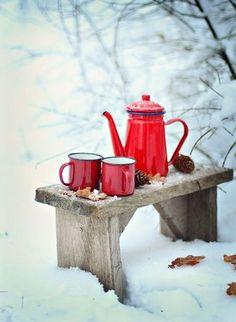 my-very-own-life-in-the-woods:  Tea in the winter garden… (via pinterest)