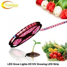 Led育てるライトdc12v成長ledストリップ5050 ip20 ip65植物成長ライト用温室水耕植物、5メートル/ロット