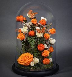 Real Enchanted Roses That Last For Twenty Years Or More - Neatorama