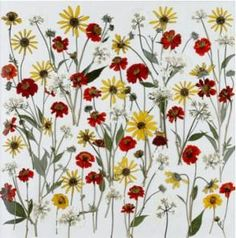 Cómo hacer cuadros con flores secas prensadas por nosotros | Aprender manualidades es facilisimo.com