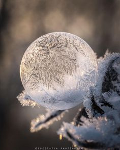 "gyclli: "" A Frozen Soap Bubble in the snow Photography by Anne Sofie Eriksson (@spectatia_) https://www.instagram.com/ """