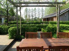 hedges forming the gardenstructure / hagen vormen de basisstructuur  Design and photo: www.hetbuitenland.nl / Marijn Vereijken