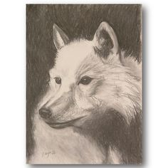 Arctic Wolf charcoal and chalk illustration Arctic Wolf, Material Design, Charcoal, Web Design, My Arts, Branding, Creative, Illustration, Painting