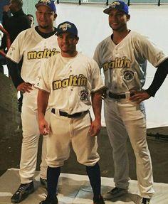 M. Cabrera, J. Altuve y C. González Lideres Maltin Polar
