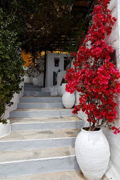 Ano Syros, Syros Island / By * Beezy * via Flickr