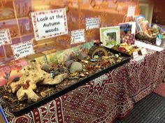 The Autumn Woods. Small World Play with fiction and non fiction books, writing frames with Autumn co Autumn Display Eyfs, Autumn Eyfs, Investigation Area, Leaf Man, Tuff Spot, Small World Play, Nocturnal Animals, Bonfire Night, Nature Table