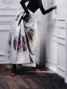 Dior par Raf Simons - Spring Summer 2013