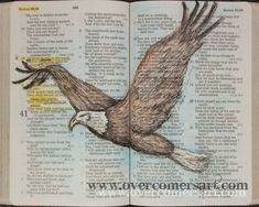 Inspired by numerous requests sketched directly into Dianas personal Bible, this is an inspirational encouragement for all....He gives power to the