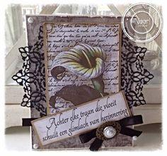 Noor! Design Spotlight - Condoleance