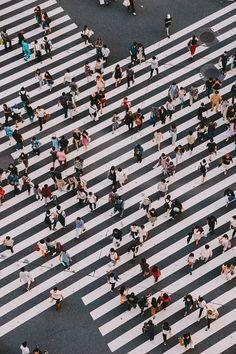 Hiro-Gotos-photography-Tokyo-the-city-where-tradition-meets-modernity-5a7da04141bc3__700.jpg 700×1.050 pixeli