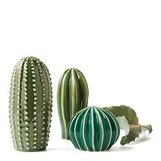 A set of three ceramic cactuses in different shapes and sizes.