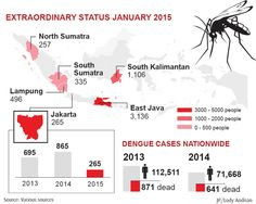 Governor Ahok comes down with dengue | The Jakarta Post
