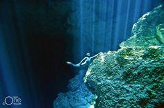 freediving dans les cenotes du yucatan 3   Freediving dans les Cénotes du Yucatan   plongee photo image freediving Eusebio Saenz de Santamar...