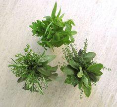 Herb bouquet, add a few little flowers too calendula, lavender, chamomile