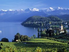 Spiez Switzerland. Where a 90 year old lady bought me tea and showed me around her village...then offered me fondue. Life is full of surprises. A truly beautiful place.