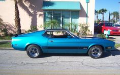 3/4 vinyl top  http://slickstang.com/Photos/1973/1973%20mustang_fastback_mach1_acapulco_blue_black_001.jpg