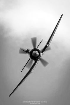 A stunning snap of this RAAF Hawker Sea Fury