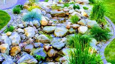 Tips for Building Ponds in Your Backyard - Great Affordable Backyard ideas Garden Stream, Water Garden, Garden Pond, Waterfall Lights, Natural Waterfalls, Ponds Backyard, Backyard Waterfalls, Building A Pond, Pond Pumps